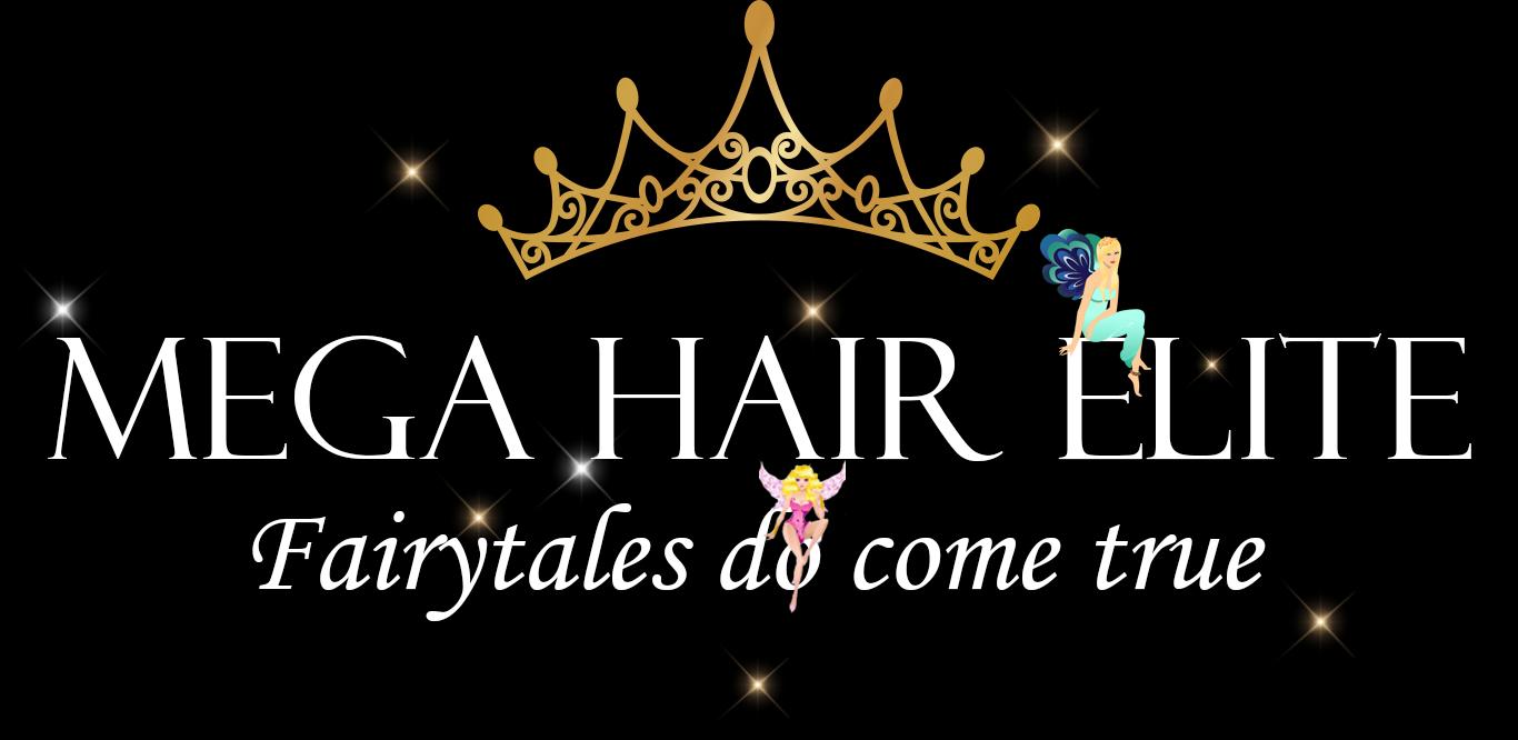 Mega Hair Elite Hair Extensions Boston Susan Dantona
